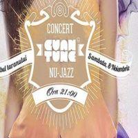 Castiga o invitatie dubla la concertul Cuantune
