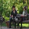 Articole despre Filme - 1 mai: Ziua Filmului Romanesc la HBO