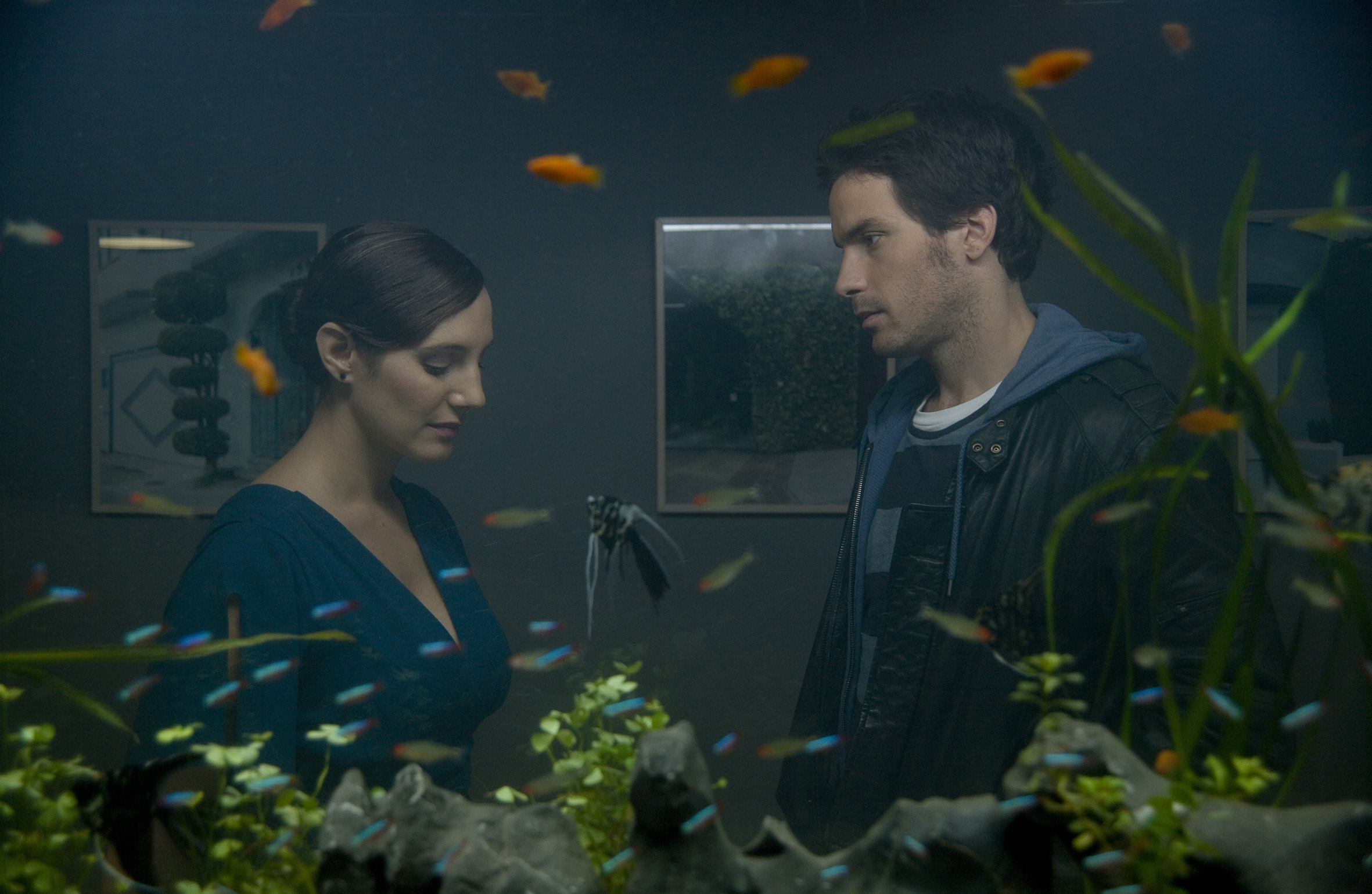 La Vida de los Peces (Viata pestilor) - cronica film (2)