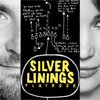 The Silver Linings Playbook - ce am invatat