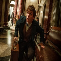 Cronici Filme - Fantastic Beasts and Where to Find Them - un fel de Pokemon mai cool
