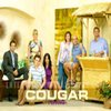 Serial: Cougar Town