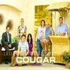 Filme Seriale - Serial: Cougar Town