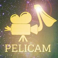 Articole despre Filme - Cum a fost la Festivalul International de Film Pelicam de la Tulcea 2015 - despre mediu si oameni
