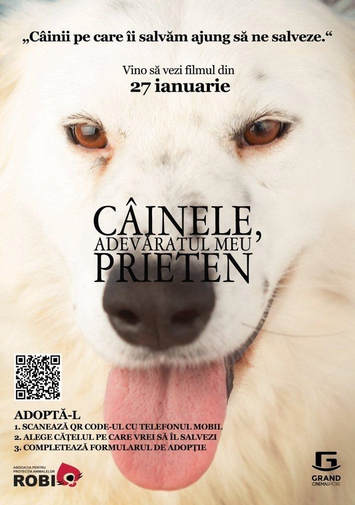 adopta-un-caine-grand-cinema-more-2__1_.jpg