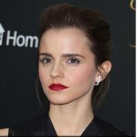 Emma Watson si Amanda Seyfried au fost victimele unui hack