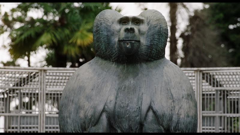"""Stiri despre Filme - """"Ouale lui Tarzan"""" in premieră mondială la TIFF"""