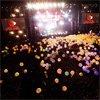 Articole despre Muzica - Documentar despre Arcade Fire - Summer Into Dust (video)