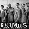 Articole despre Muzica - Grimus canta la Exit, Rock for People si Sziget