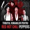 Articole despre Muzica - Tributul romanilor pentru Red Hot Chili Peppers