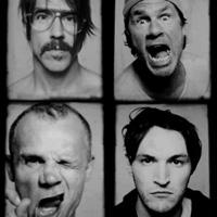 Articole despre Muzica - Melodiile celor de la Red Hot Chili Peppers au fost folosite de CIA pentru a-i tortura pe detinutii teroristi