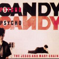 Articole despre Muzica - Amintiri din muzica VIII: Albume esentiale '85-'89