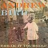 Cronici de Albume Muzicale - Andrew Bird - Break It Yourself, album