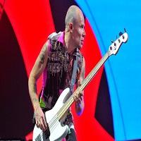 Stiri din Muzica - Red Hot Chilli Peppers, confundati cu Metallica de catre vamesii din Belarus, care le-au cerut insistent autografe