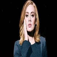 Stiri din Muzica - Adele si-a dedicat concertul din New York cuplului Brad Pitt - Angelina Jolie