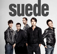 Suede revin in Romania la Summer Well 2013