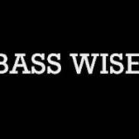 Stiri Evenimente Muzicale - Proiectul Basswise vine la B'ESTFEST Summer Camp 2013!