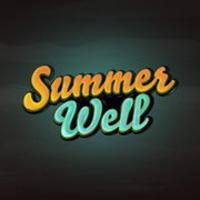 Stiri Evenimente Muzicale - Programul artistilor pe scena Summer Well 2013